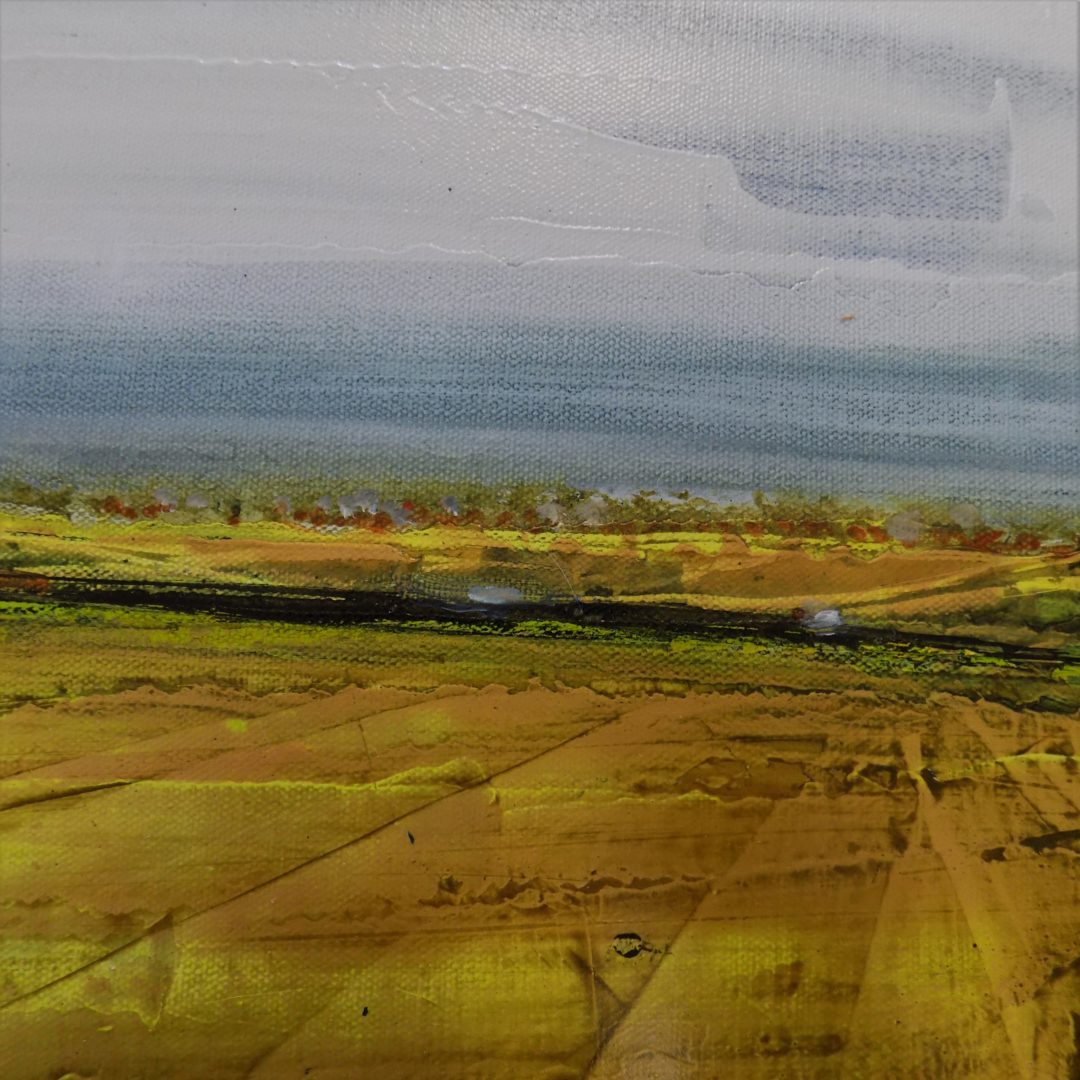 The Fields of Seeds 12 x 12  NEW Lorimer Gallery PEI  SOLD